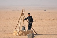 Bedouin boy in Tadmorean Desert I