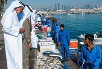 Fish market in Doha, Qatar