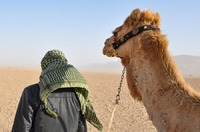 Bedouin and his camel in Tadmorean Desert