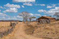 The climate induced multi-year drought has left all fields bare and barns empty for farmers in the Northeast Brazil.
