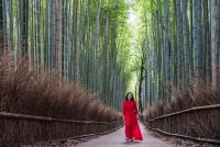 Woman in red in the bamboo grove in Arashiyama, Japan