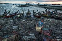 Morning in the Fish Port in Sittwe, Myanmar
